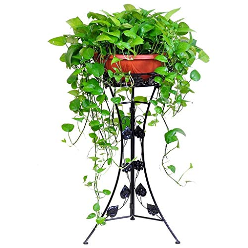 Lilis - Soporte para plantas (hierro forjado, para jardín, patio, suelo, sala de estar, diseño clásico, color negro
