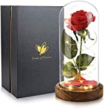 Dream of Flowers Beauty and The Beast Rose, Glass Dome brown Wood Base, Valentine's Party Gifts, Wedding Gifts, Best Gift for Her (N2)