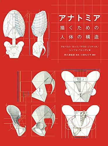 アナトミア 描くための人体の構造
