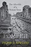 From Pompeii: The Afterlife of a Roman Town (Paperback)