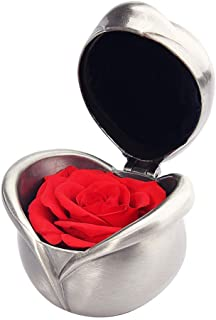 birthday gifts for Women,Preserved Flower Rose,Never Withered Roses,Upscale Immortal Flowers,Gifts Women,Her,Girls,Sister, Mother's Day,Valentine's Day,Anniversary,Birthday,Wedding (A.red)