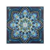 VETPW DIY 5D Flores de Mandala Diamante Pintura Kit, Bricolaje Diamond Painting...