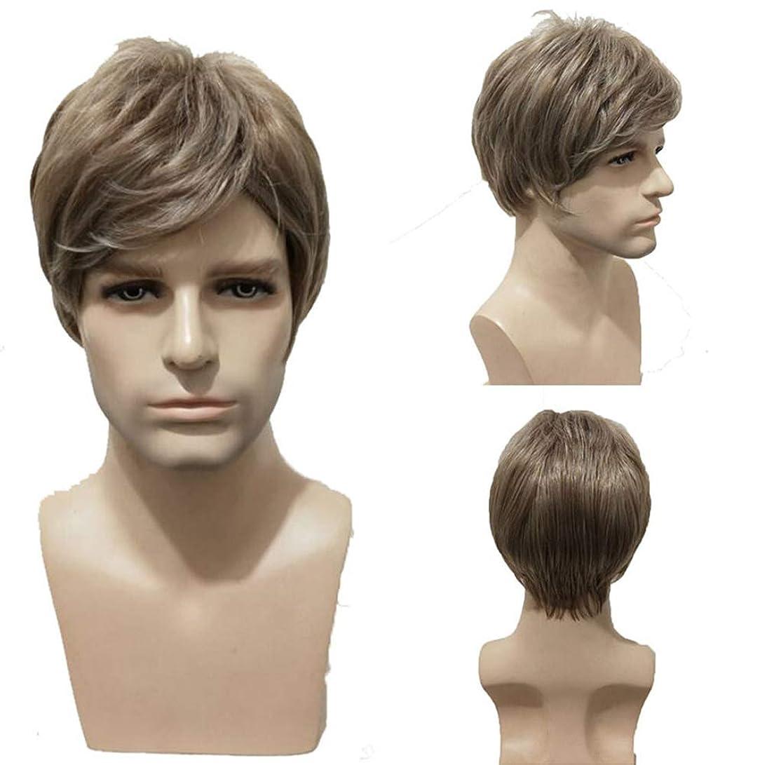 分解する誇張する昇進人のかつら150%密度合成耐熱ショートブラジル人毛ウィッグブラウン28cm