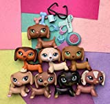 PowerToy lps Dachshund 8pcs, lps Dog 675 1491 307 909 1751 325 1631 with lps Accessories Scraf Glasses Food Kids Gift
