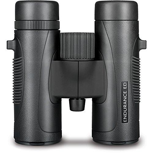 Hawke Fernglas Endurance ED 8x32, schwarz, M, 36200