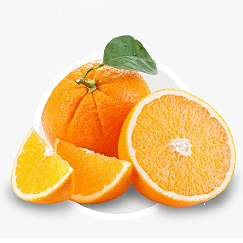 Ncient 10 pcs/Sac Graines de Orange Semences de Fruit, Fruitiers Seed Plantes Graines à Planter Arbres Fruitiers