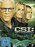 CSI: Crime Scene Investigation - Season 14.2 [3 DVDs] - Ted Danson