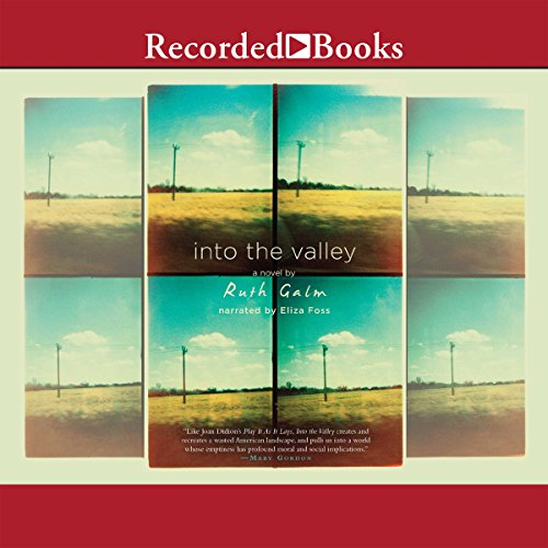 Into the Valley audiobook cover art