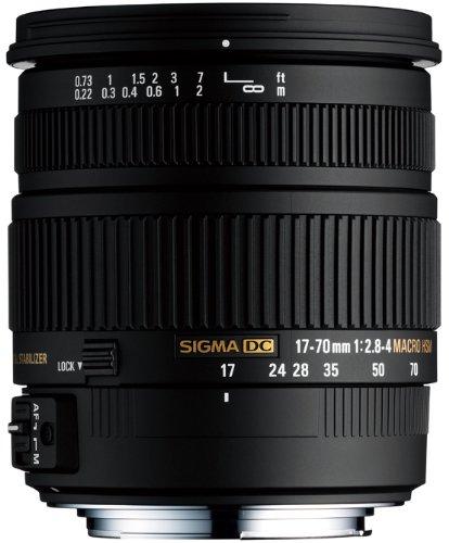 Sigma 17-70mm F2.8-4 DC Macro OS HSM - Objetivo (Macro, 17/13, Automático/Manual, 17-70 mm, Sony, Negro)