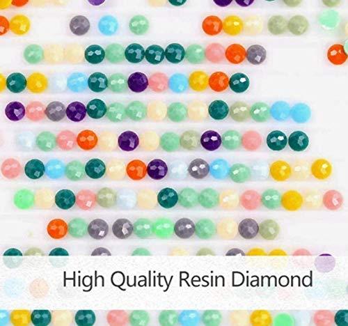 5D Diamond Painting Embroidery DIY Full Drill Diamant Kreuzstich Stickerei Bild