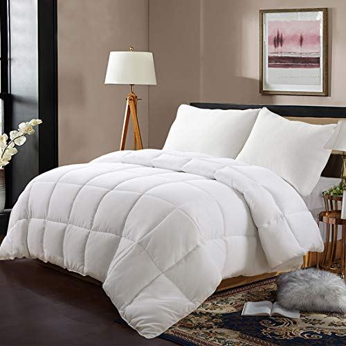 EDILLY Luxury Down Alternative Quilted Queen Comforter-Stand Alone...