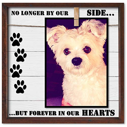 Pet Memorial Picture Frame. Cleverly Designed for 7x5, 4x6, 6x4 or Similar Sizes. Very Practical Sympathy Pet Photo Frame. In Memory of a Dog or Cat. A Caring Loss of Pet Gift Keepsake.