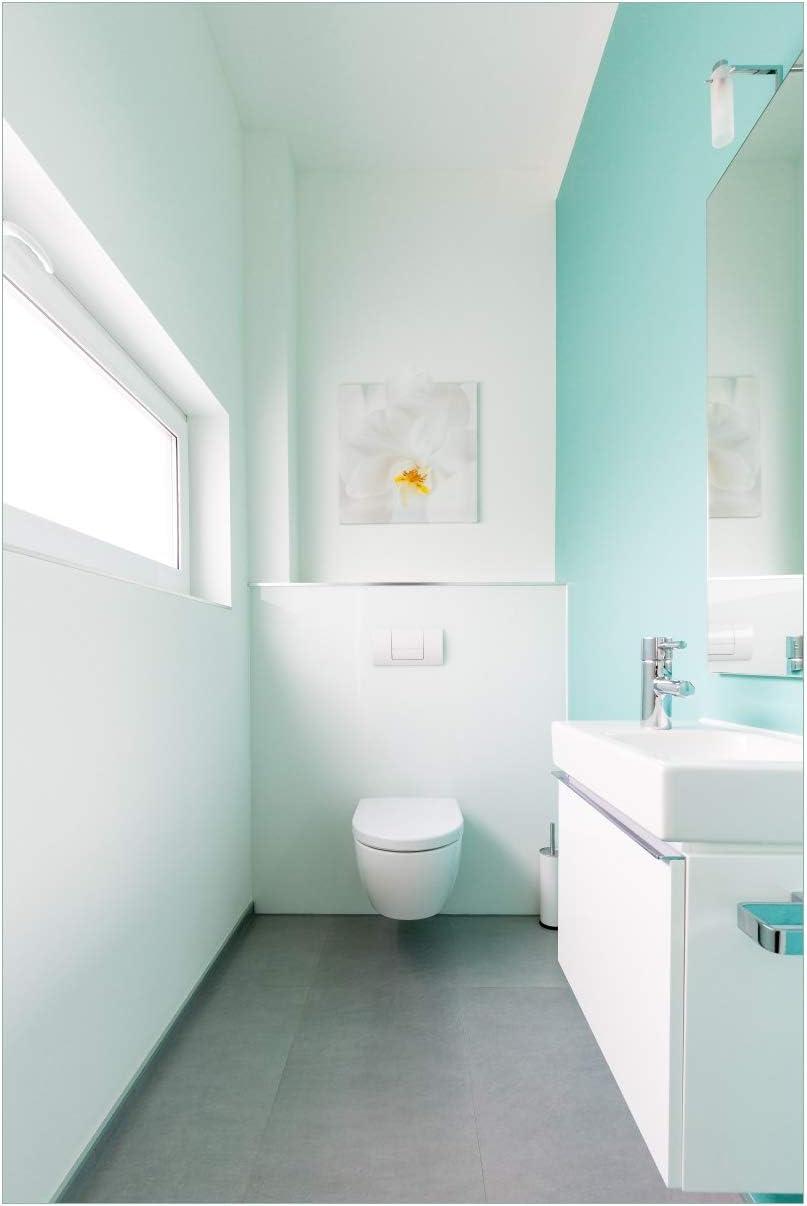 Wallario Glasbild Badezimmer Gästetoilette Innenansicht   WC und ...
