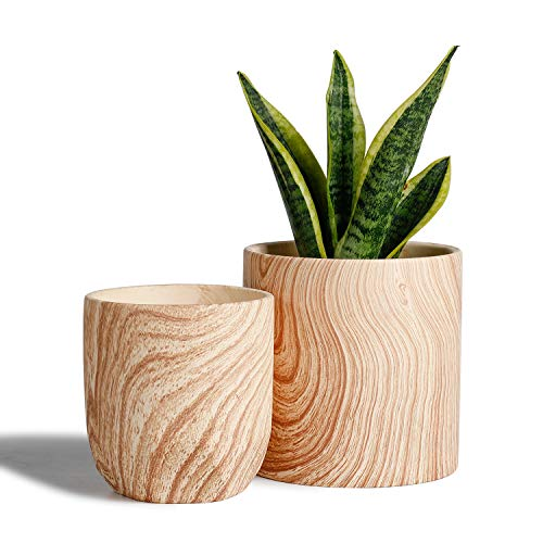 POTEY 053701 Ceramic Planter Pots Indoor - Set of 2 6 inch Modern Large Cylinder Planter + 4.8 inch Medium Round Plant Pot, Natural Wood Texture Decorative Containers for Aloe Plants Flower