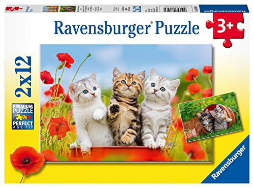 Ravensburger Kinderpuzzle 07626 - Katzen auf Entdeckungsreise - 2 x 12 Teile