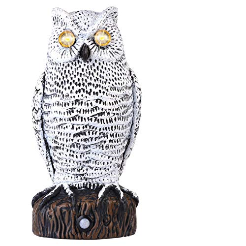 Lubatis Owl Decoy to Scare Birds Away Motion Activated Plastic Owl Scarecrow with Glowing Eyes, Realistic Sound Deterrent to Pigeons, Squirrel, Rabbit