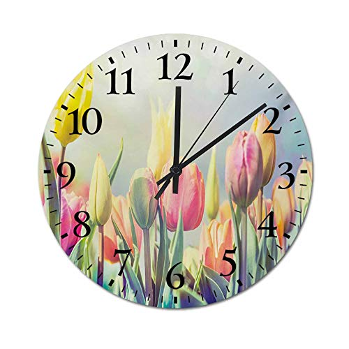 Homesonne Indoor Clocks Tulips Flower Bed in Park Serene Landscape Happiness Fresh Spring Environment Image Modern Silent Quartz Wall Clock Quiet and Easy to Read Multicolor 9.8 Inch