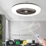 WJJH Ceiling Fans with Lighting with Remote Control Dimmable Dimmable Wind Speed ??Modern LED Ceiling Lights Ceiling Light Silent Pendant Light, Gray