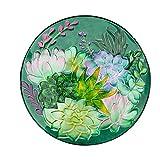 Evergreen Garden Iridescent Succulent 18 inch Glass Bird Bath Bowl 18 x 2 x 18 Inches 64oz Outdoor Décor for Your Garden, Patio or Lawn. Bird Lovers Glass Bird Bath or Feeder Dish