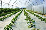 Suncover Greenhouse Plastic Film Clear Polyethylene 6 mil 4 Year UV Resistant Cover (8 ft Wide x 25...