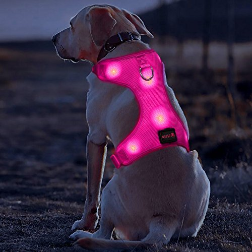 BSEEN LED Dog Harness USB Rechargeable Dog Vest, LED Glowing Pets Walking Accessory Soft Mesh Vest with Adjustable Belt Padded Lightweight Collar for Dogs Puppies (Large, Rose Red)