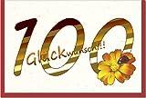 metalum Premium-Glückwunschkarte zum 100. Geburtstag mit ausgefallener Papierapplikation in Form einer hübschen Blume mit kleinem Marienkäfer