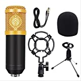 Kit de micrófono de sonido de condensador profesional Conferencia Karaoke Micrófono dinámico Cable de micrófono con montaje de choque talla única 4