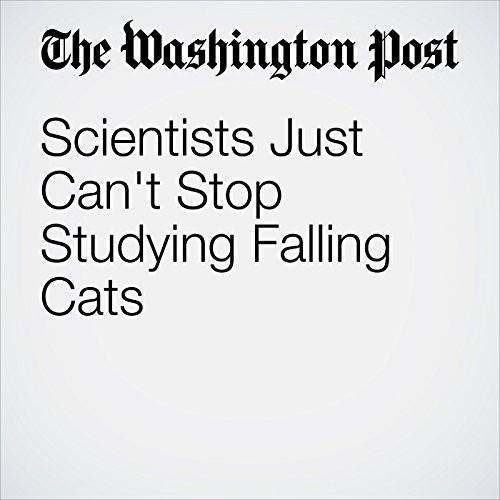 Scientists Just Can't Stop Studying Falling Cats audiobook cover art