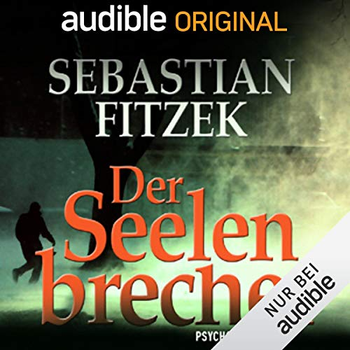 Der Seelenbrecher audiobook cover art