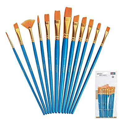 Snoya Paint Brushes Set Professional Fine Paintbrushes for Kids and Adults to Create Art Acrylic Oil Watercolor, Body Professional Painting Kits with Nylon Hair Brush