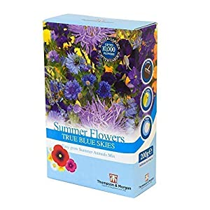 Blue Summer Flowers True Blue Skies Mix Blue Colour Theme Easy Grow Summer Annuals Mix Scatter Pack, 1 x 200g Pack by Thompson and Morgan