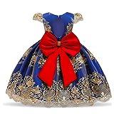 TTYAOVO Vestido de Fiesta de Cumpleaños de Princesa sin Respaldo Bordado de Niñas 90 (13-24 Meses) Azul