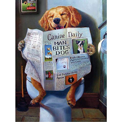 Kit de cuadro de diamantes DIY 5D, pintura de diamantes para perros, pintura por números, para adultos, bordado, punto de cruz, kit de punto de cruz, 30 x 40 cm