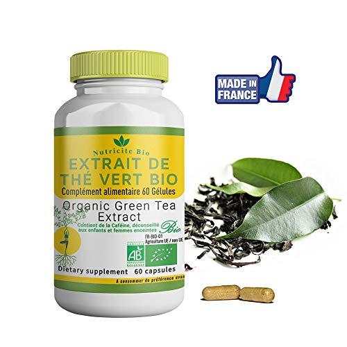 Extrait de Thé vert Bio-60 gelules-Fabriqué en France–OFFERT: Notice d'utilisation PDF-the vert Bio Détoxifiant pour retrouver de l'énergie et une digestion efficace