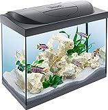 Tetra Starter Line Aquarium en kit complet avec éclairage LED