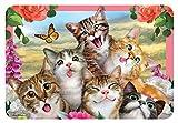 Howard Robinson hr40120Selfie Katzen Kinder Tisch-Sets