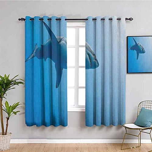 Shark - Cortina para exteriores, diseño de imagen artística con ilustración digital de personajes de la criatura del mar salvaje, 2 paneles, color azul, gris y blanco
