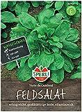 Premium Feldsalat Verte De Cambrai | Frostharte Sorte | Großblättrig Vitaminreich und Schnellwüchsig | Aussaat bis Oktober | Samenfeste Feldsalat Samen