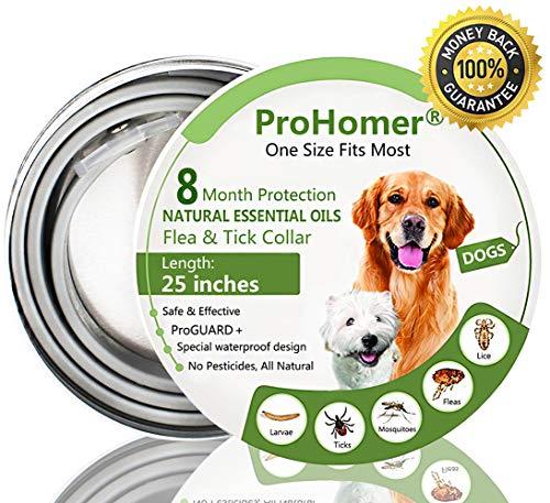 Collare Antipulci Cane, Antiparassitario per Cani per Tutti i Tipi di Cani Impermeabile, 8 Mesi di Efficacia Protezione, Formula Naturale | Completamente Regolabile
