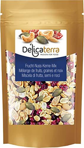 Delicaterra Frucht-Kerne-Nuss-Mix Vielfältige Kerne-, Trockenfrucht- und Nussmischung aus Kürbiskernen, Cranberries, Cashewkernen und Sonnenblumenkernen, 1 kg