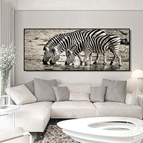 QAZEDC Canvas schilderij Moderne Dieren Art Posters en Prints Muurschildering Canvas Schilderen Zebra Drinkwater Foto's voor Woonkamer Home Decor Geen Frame 60x80cm
