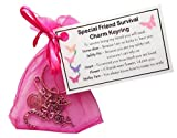 SMILE GIFTS UK Friendship/ Best Friend Survival Charm Keyring - Handmade Special Friend Gift for Friend (Friend Birthday Gift, Friend (Special Friend)