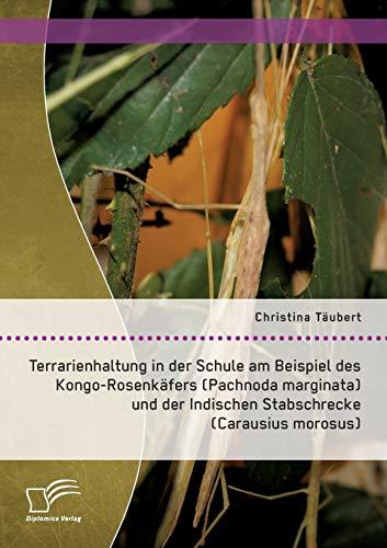 Terrarienhaltung in der Schule am Beispiel des Kongo-Rosenkäfers (Pachnoda marginata) und der Indischen Stabschrecke (Carausius morosus)
