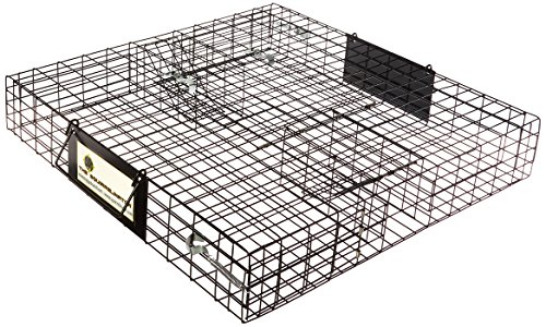 Rugged Ranch Products 100063928 Squirrelinator Trap