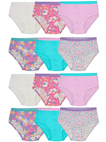 Fruit of the Loom Toddler Girls' Brief (Pack of 12), Assorted, 2T/3T