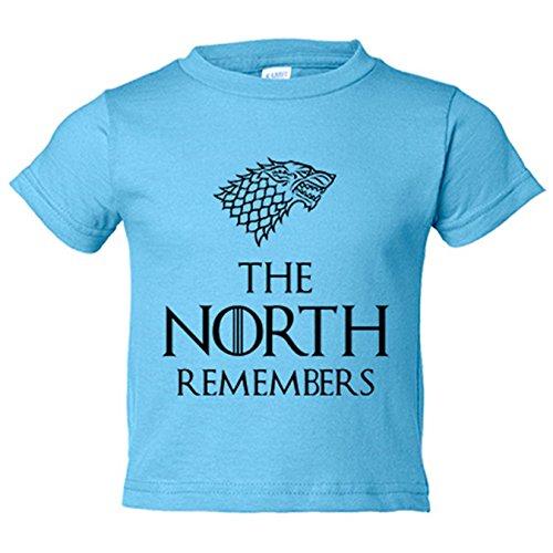 Camiseta niño frase ilustración Stark The North Remembers - Celeste, 7-8 años
