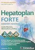 Ynsadiet Hepatoplan Forte 30Cap Zentrum 300 g