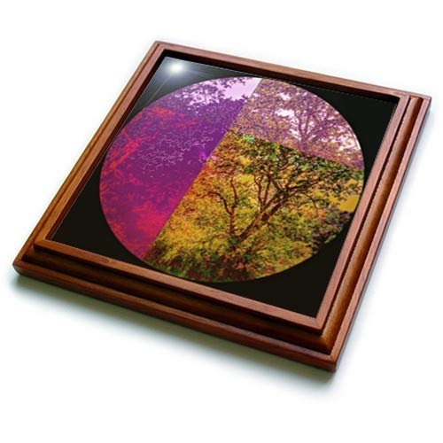 "3dRose Funny Colorful Artistic Llama Abstract Art Original Trivet With Tile, 8"" x 8"", Brown"