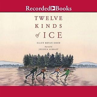 Twelve Kinds of Ice cover art
