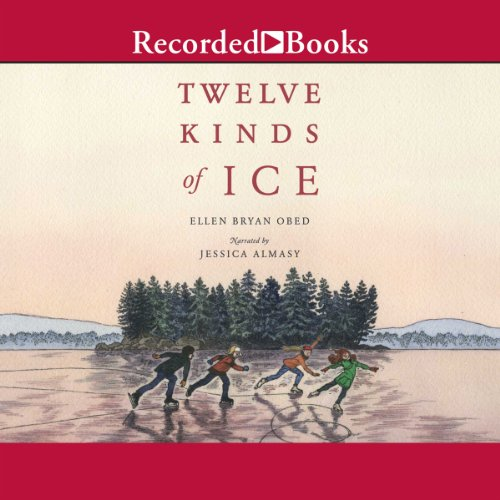 Twelve Kinds of Ice audiobook cover art